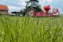 Bewegung auf den Feldern und Wiesen im Weserbergland